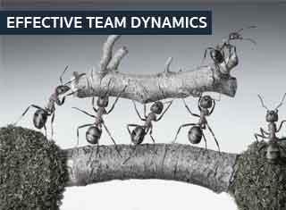 EFFECTIVE TEAM DYNAMICS