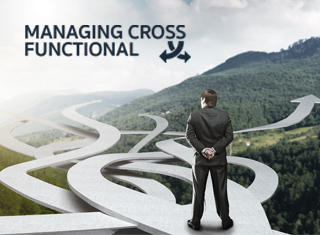 MANAGING CROSS FUNCTIONAL