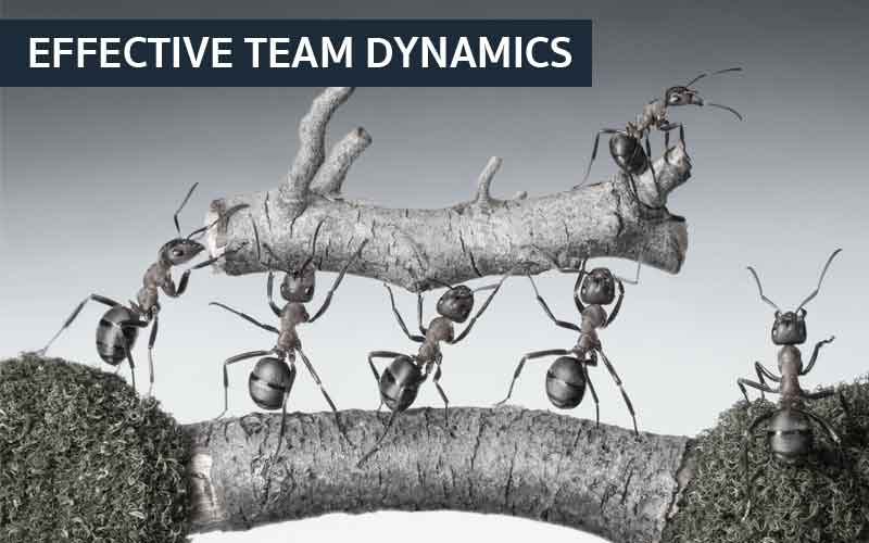 EFFECTIVE TEAM DYNAMICS