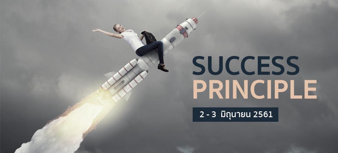 SUCCESS PRINCIPLE