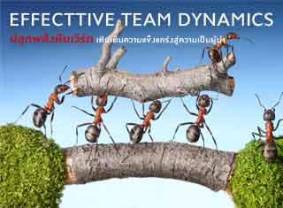 EFFECTTIVE TEAM DYNAMICS ปลุกพลังทีมเติมความแกร่งสู่ความเป็นผู้นำ